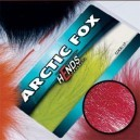 ARTIC FOX - PL06 - vínově červená