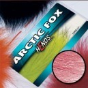 ARTIC FOX - PL05 - tmavě růžová