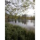 Norsko - řeka Gloma